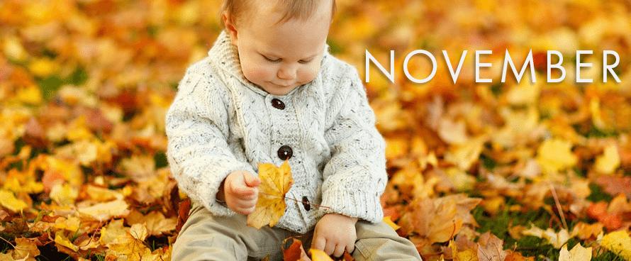 Topaz Birthstone November