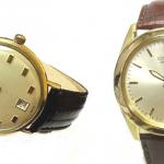 Citizen Shoes & Watches